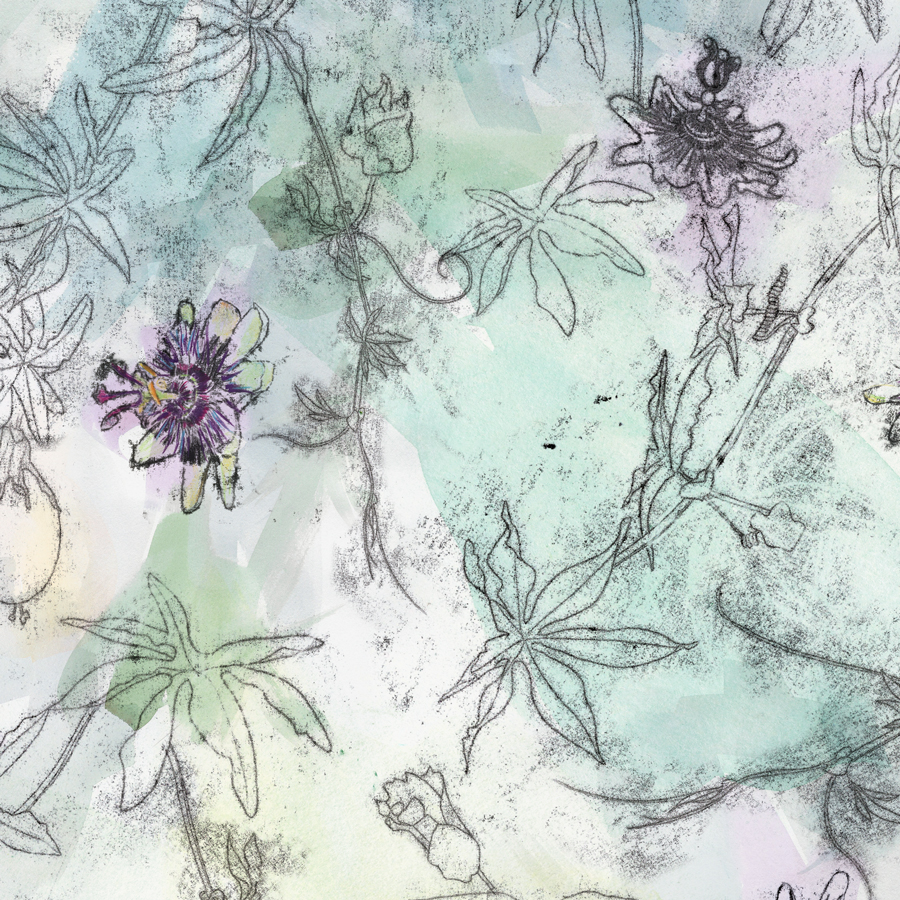 Detail of Passiflora Light