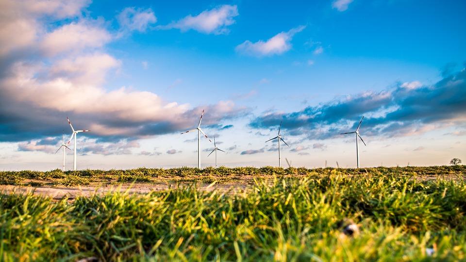 Green Industrialization