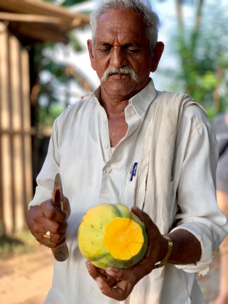 An organic fruit farmer at a zero budget natural farming site in India.