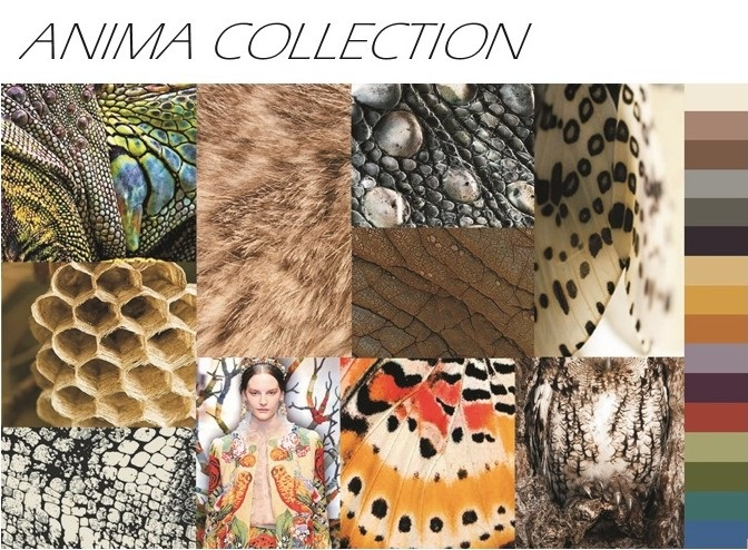 Nourison Page - Anima Collection Image 1.jpg
