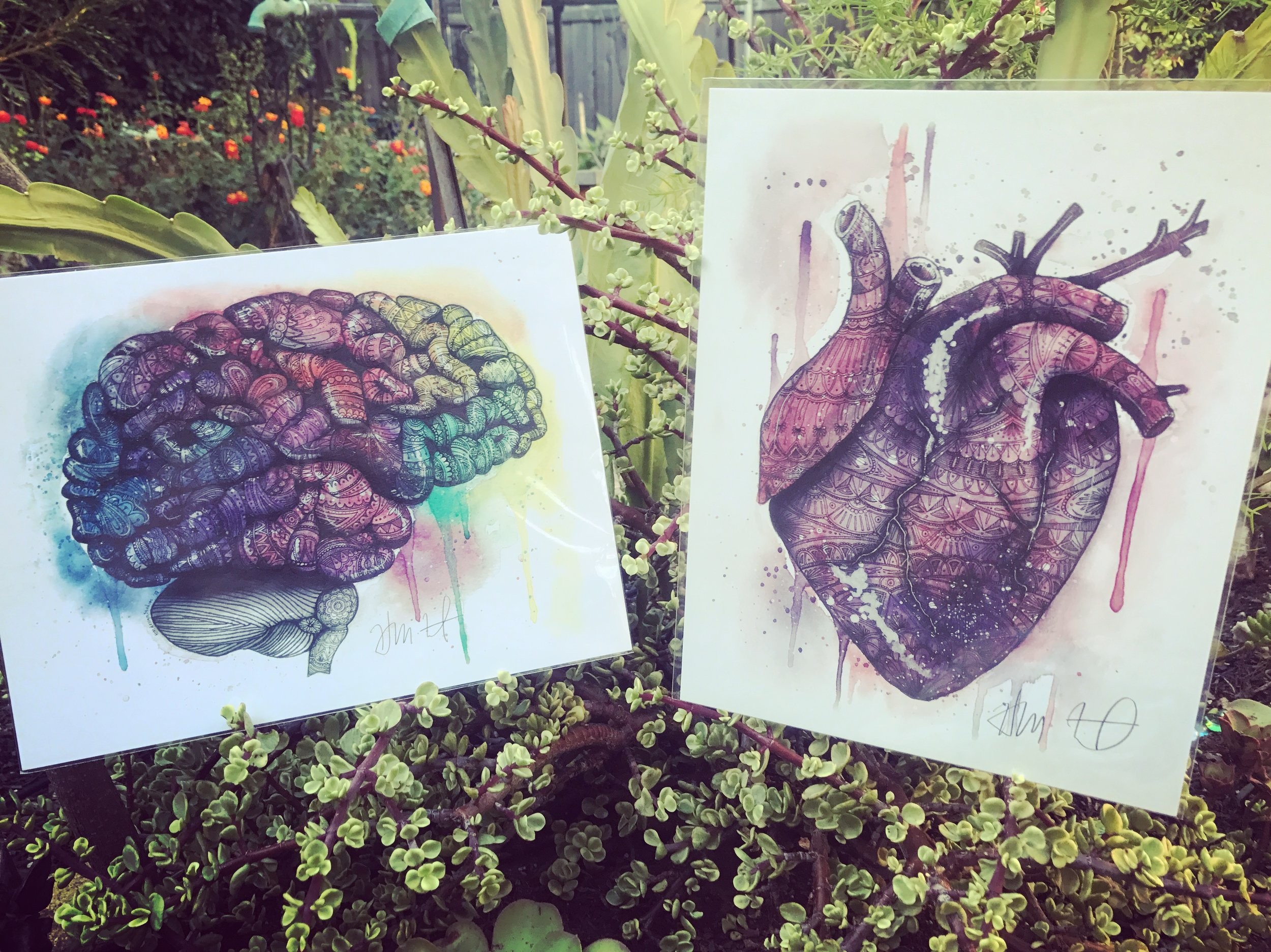heartandbrain.JPG.jpg