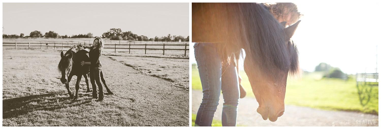 HorseMemorialSession_0004.jpg