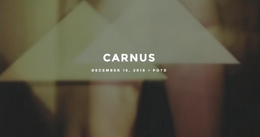CarnusMicroFestival.jpg