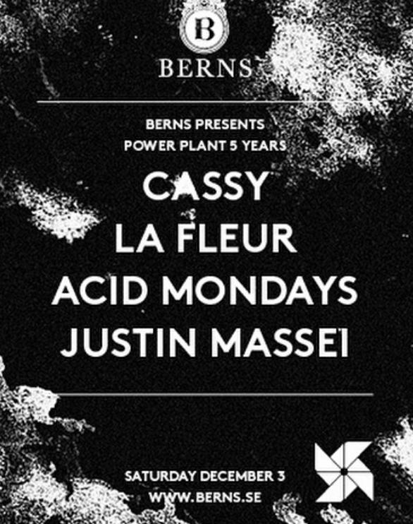 La Fleur Cassy Power Plant 5 yers Berns.png