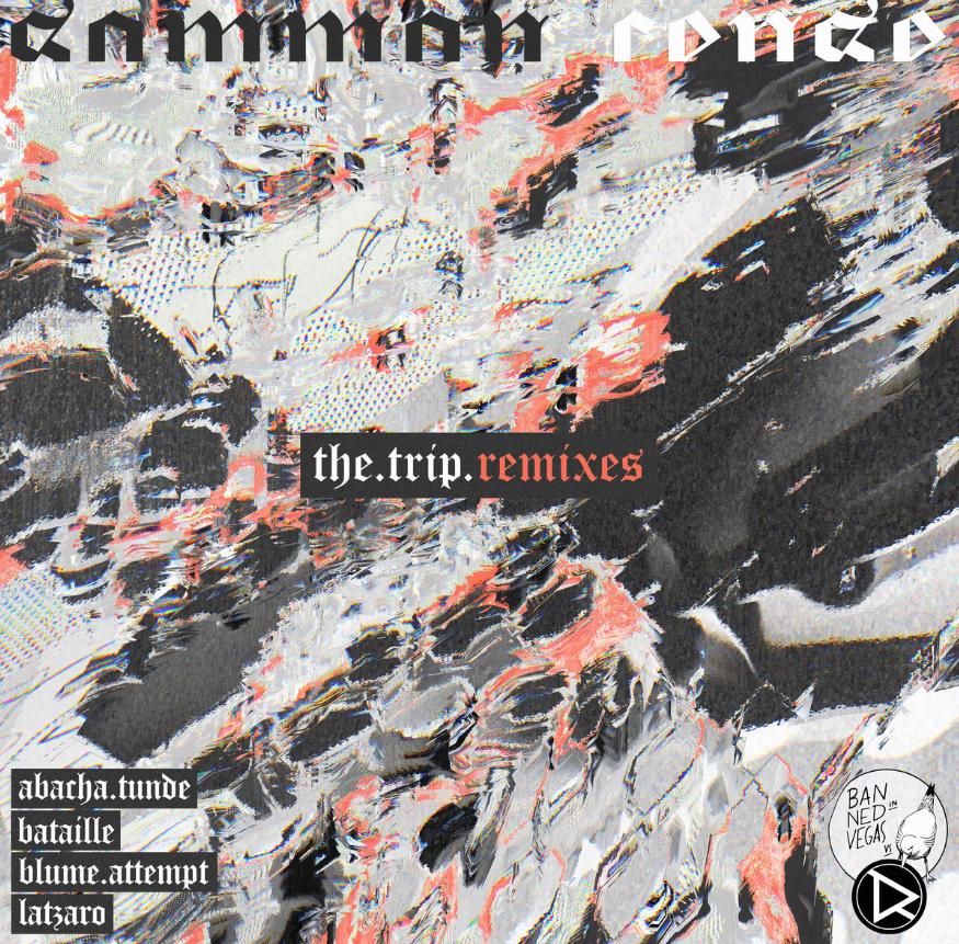 The Trip Remixes FreeDownload Drok Records.png