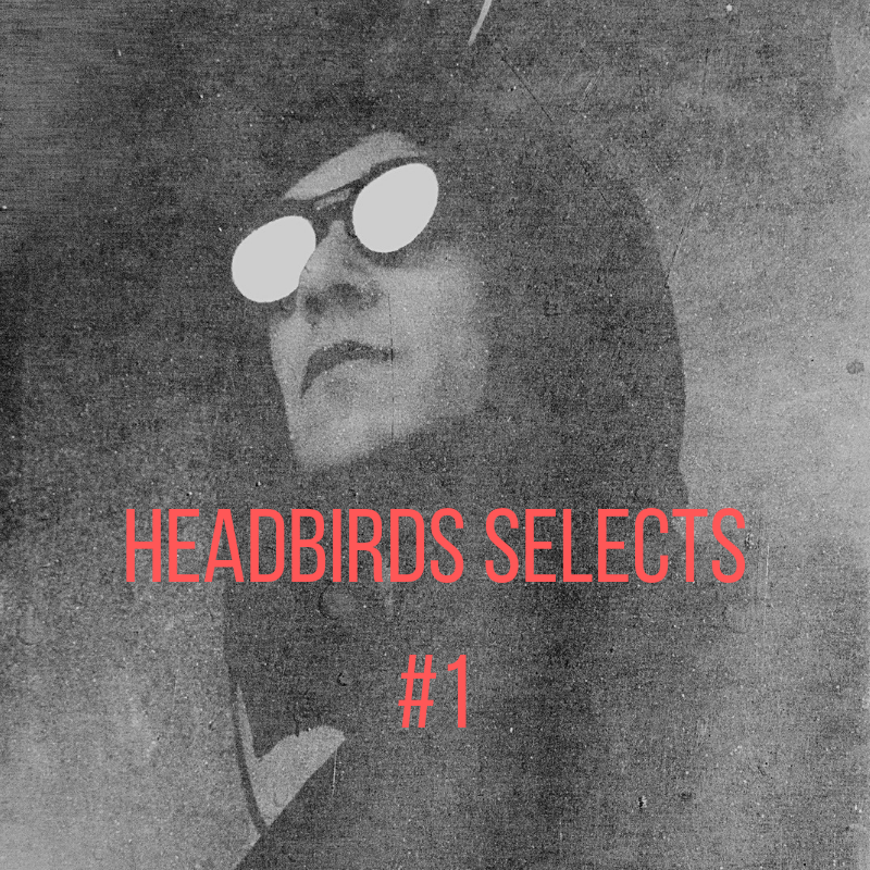 Headbirds Selects (1).png