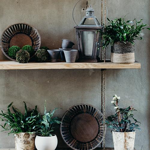 callista-designs-shop-2.jpg