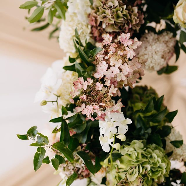 We are officially entering #hydrangea season here in the mountains...... everyone's favorite season! Thank you @juliawade for this close up view of these pretty local blooms. 💕 . . Planning: @waltonevents // Lighting: @getlitspecialeventlighting // Linens and Draping: @partytables_linensanddrapery // Rentals: @partyreflections // Flowers: @callistadesignsinc