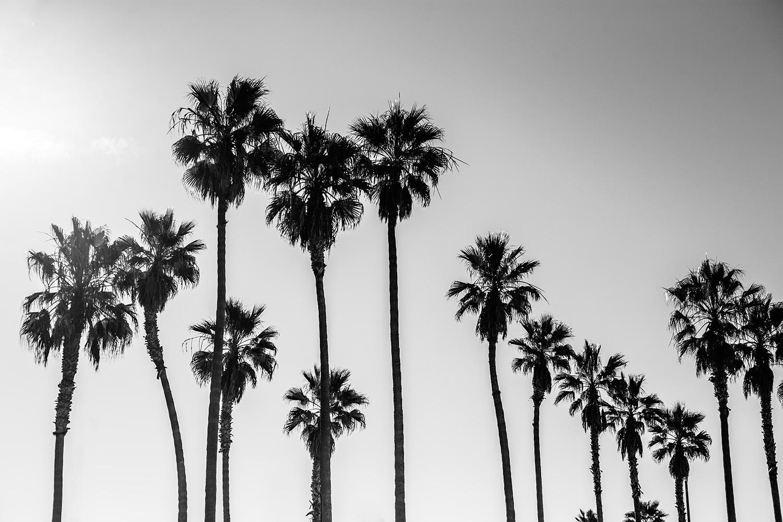 LA_lifestyle_photographer_11.jpg