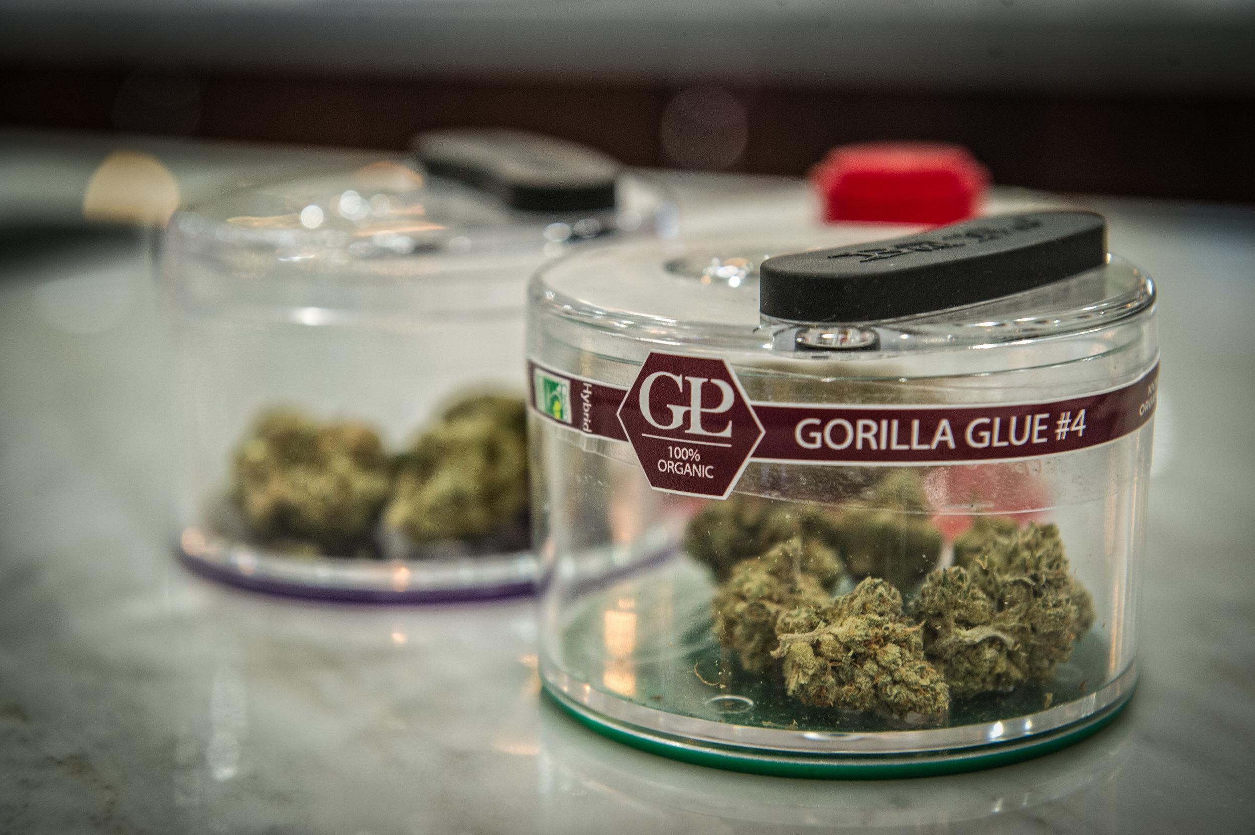Medical marijuana and the effects on PTSD.