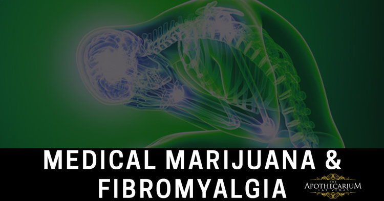 Learn more about medical marijuana and fibromyalgia and how our members manage their pain.
