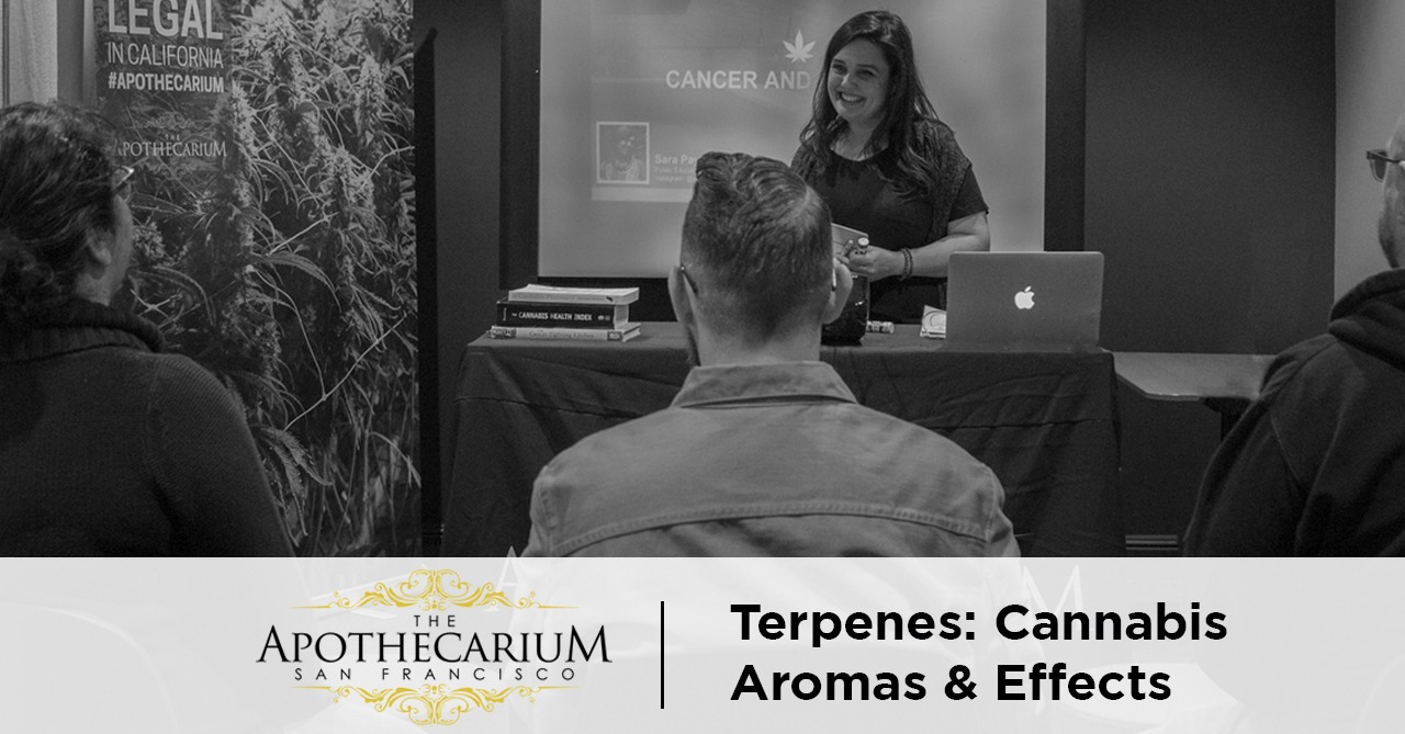 the apothecarium san francisco a medical and recreational cannabis discuss terpenes found in marijuana and their aromas and effects
