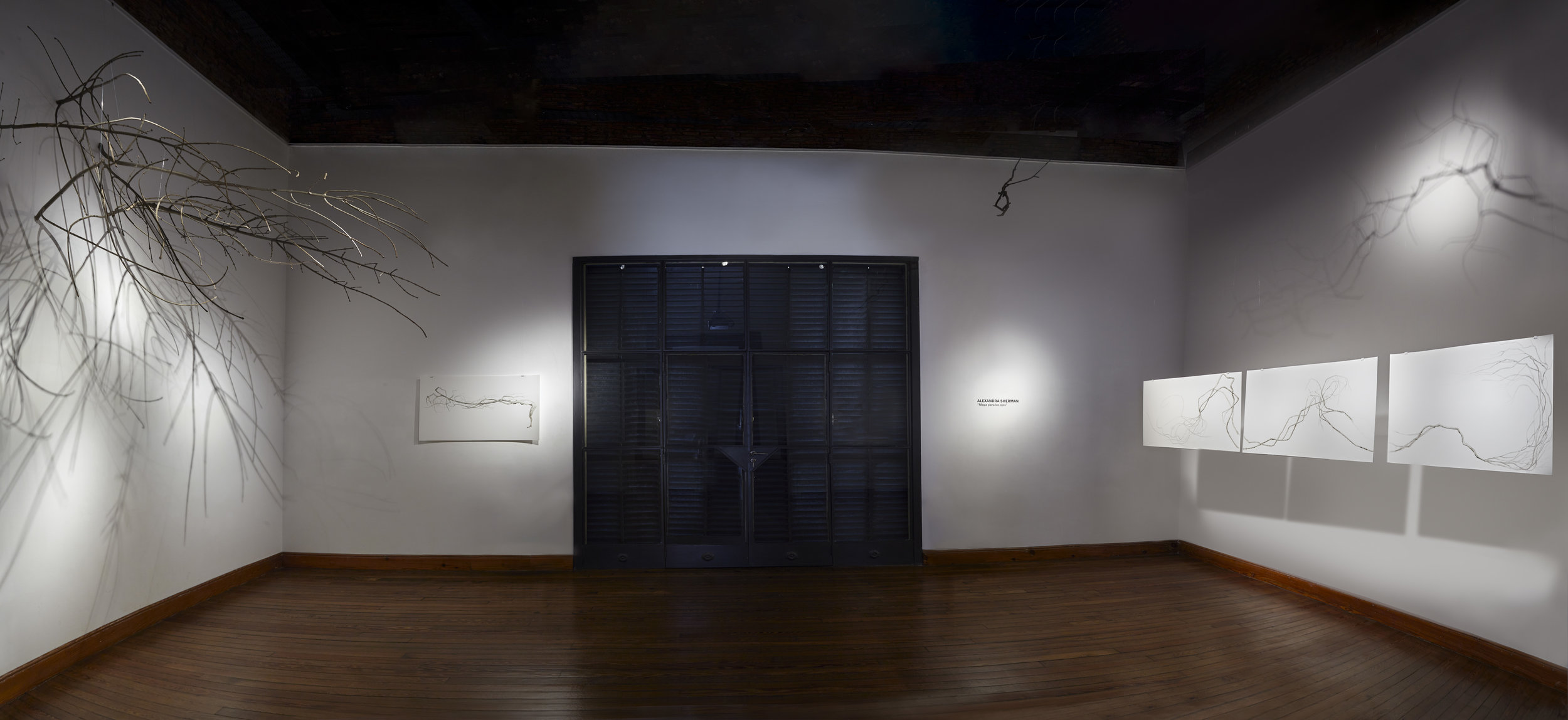 Map for the Eyes Installation photo IV (panorama)