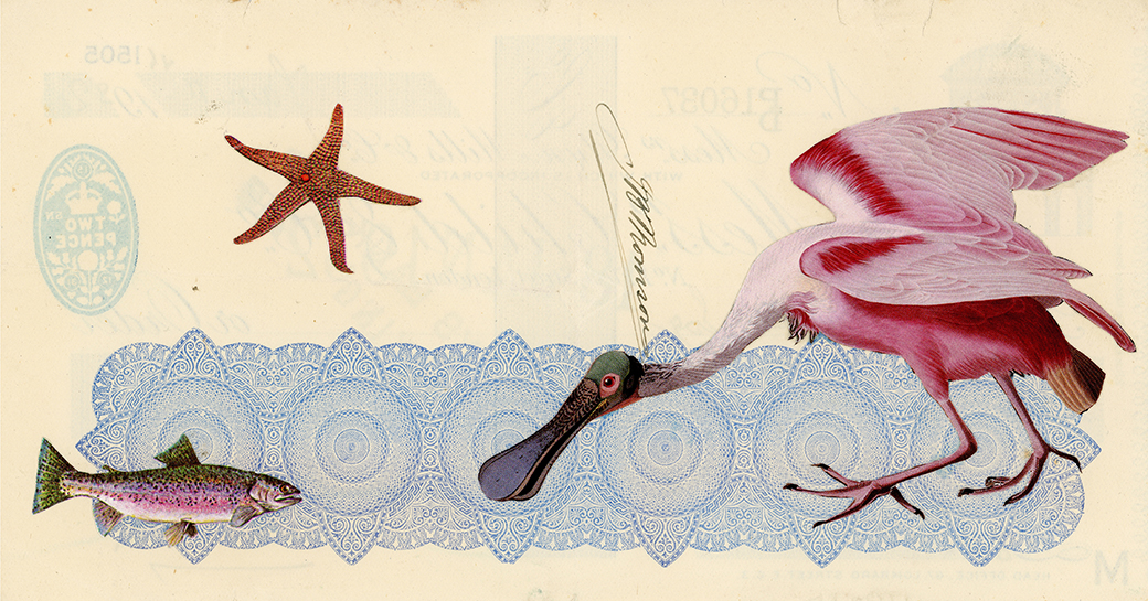 In Search of Commonalities,  Vintage and decorative paper collage on 1930's English bank check, 4 x 7.5 in. / 19 x 10 cm. 2018, Private collection