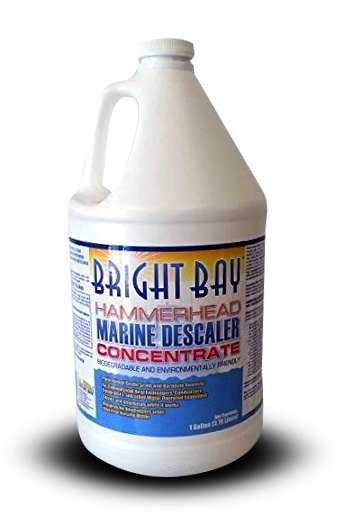 Bright Bay Descaler