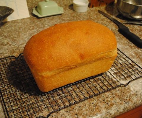first_loaf_1.jpg