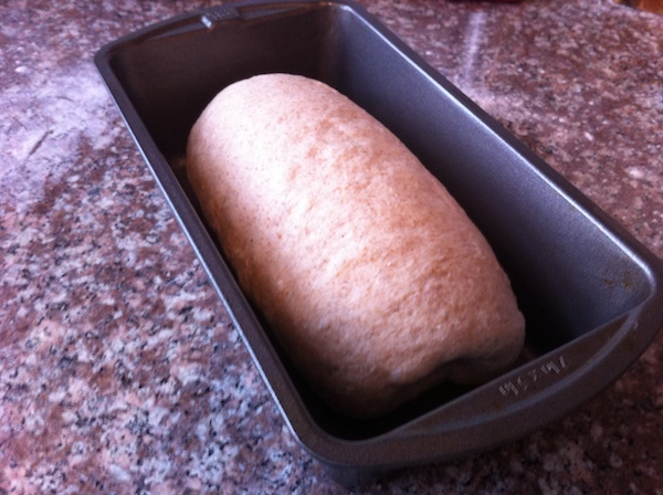 Just shaped dough.