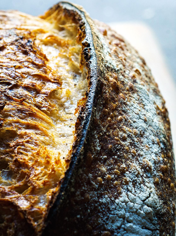 Bread Ear