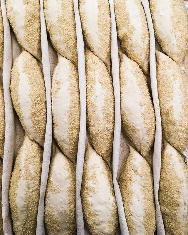 Sesame demi-baguettes resting up before they hit the oven. #bread #sesamebread #sesamebaguettes #baguette #janethebakery @janethebakery #realbread #bakery #sfbakery #sanfrancisco #sesame #sesameseeds #proofing #breadbakery