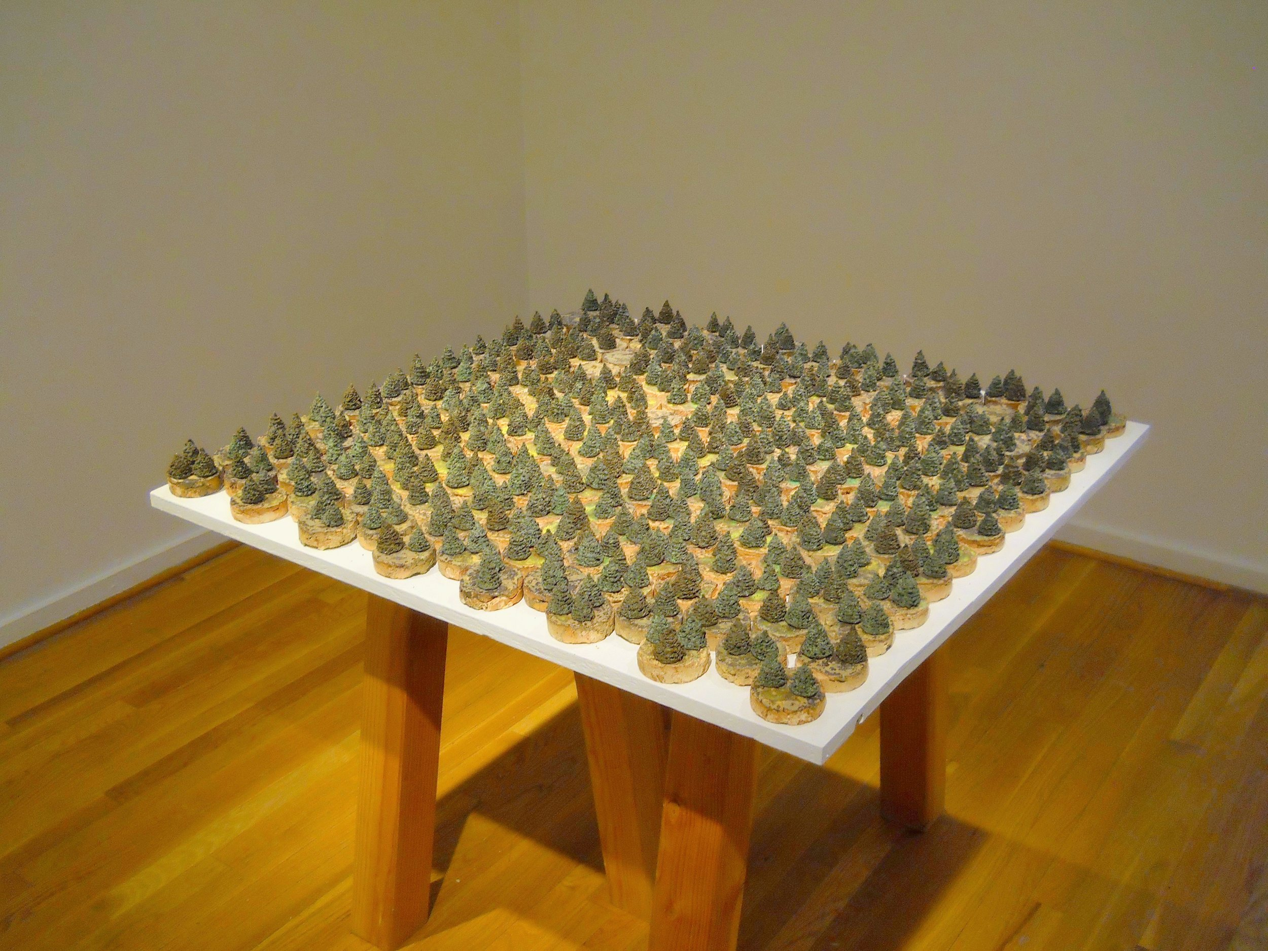 Township - 51 x 51 x 1.75various reclaimed and contaminated clays, waste glaze, unwanted stainAs displayed at the show Normal Objects (The Clay Studio, 2017), the Township is divided into parcels of land and the viewer may select any of these areas for purchase. Once the transaction has taken place, they have the option to conserve the forest and leave the object(s) purchased in their place, or to replace the forested area with a blank object with no trees, thus deforesting the areas.