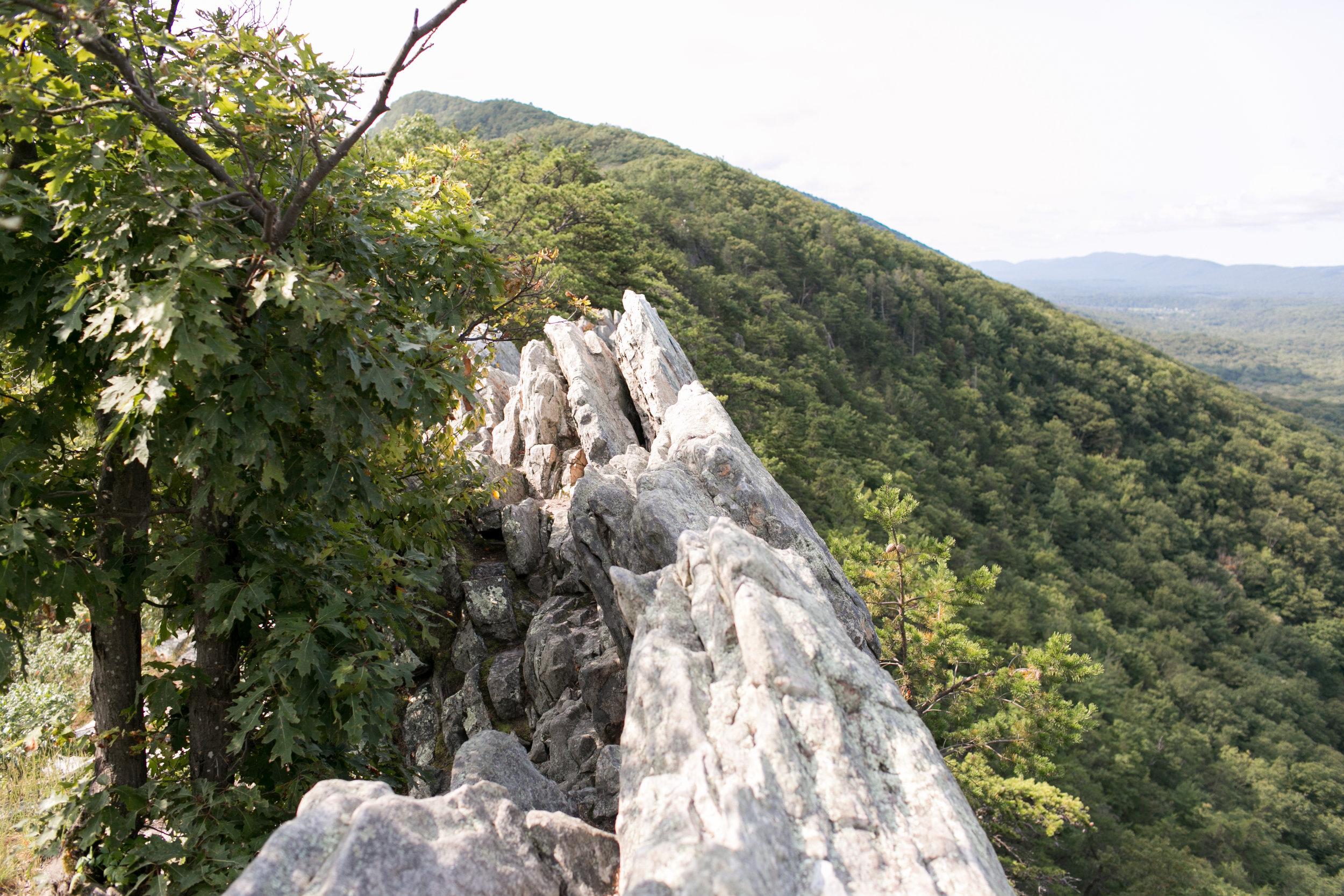 Buzzard Rock.jpg
