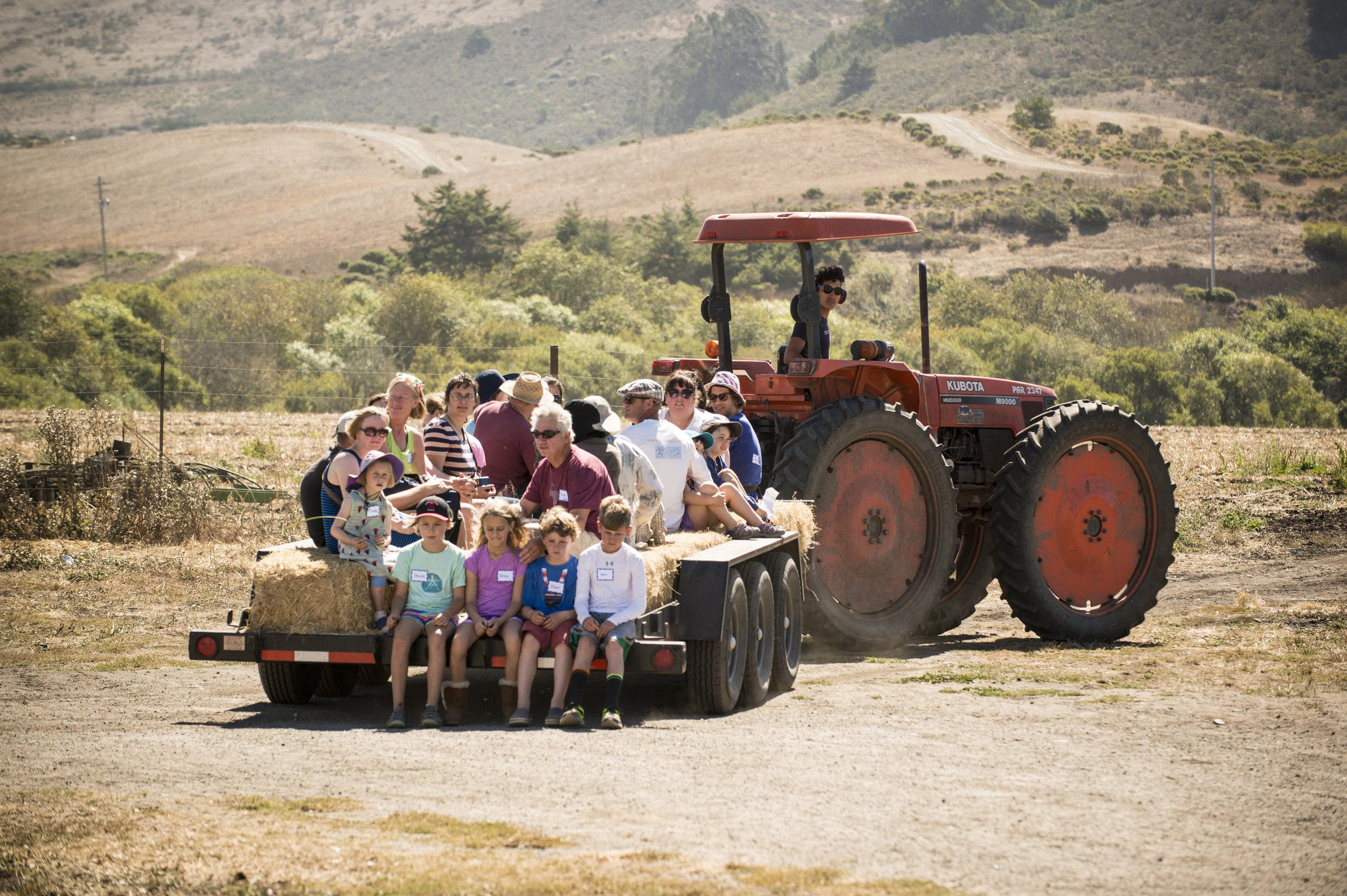 CSA Open House Day at our San Gregorio ranch.
