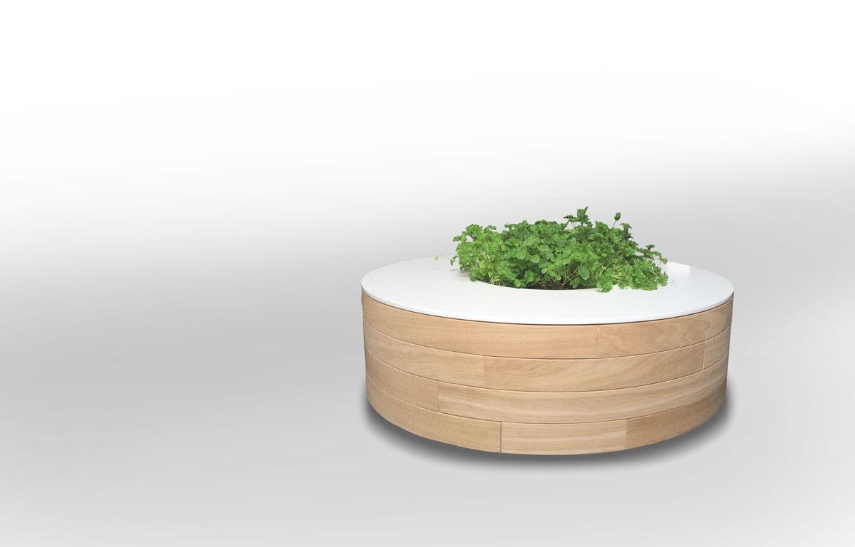 Design salontafel met plant
