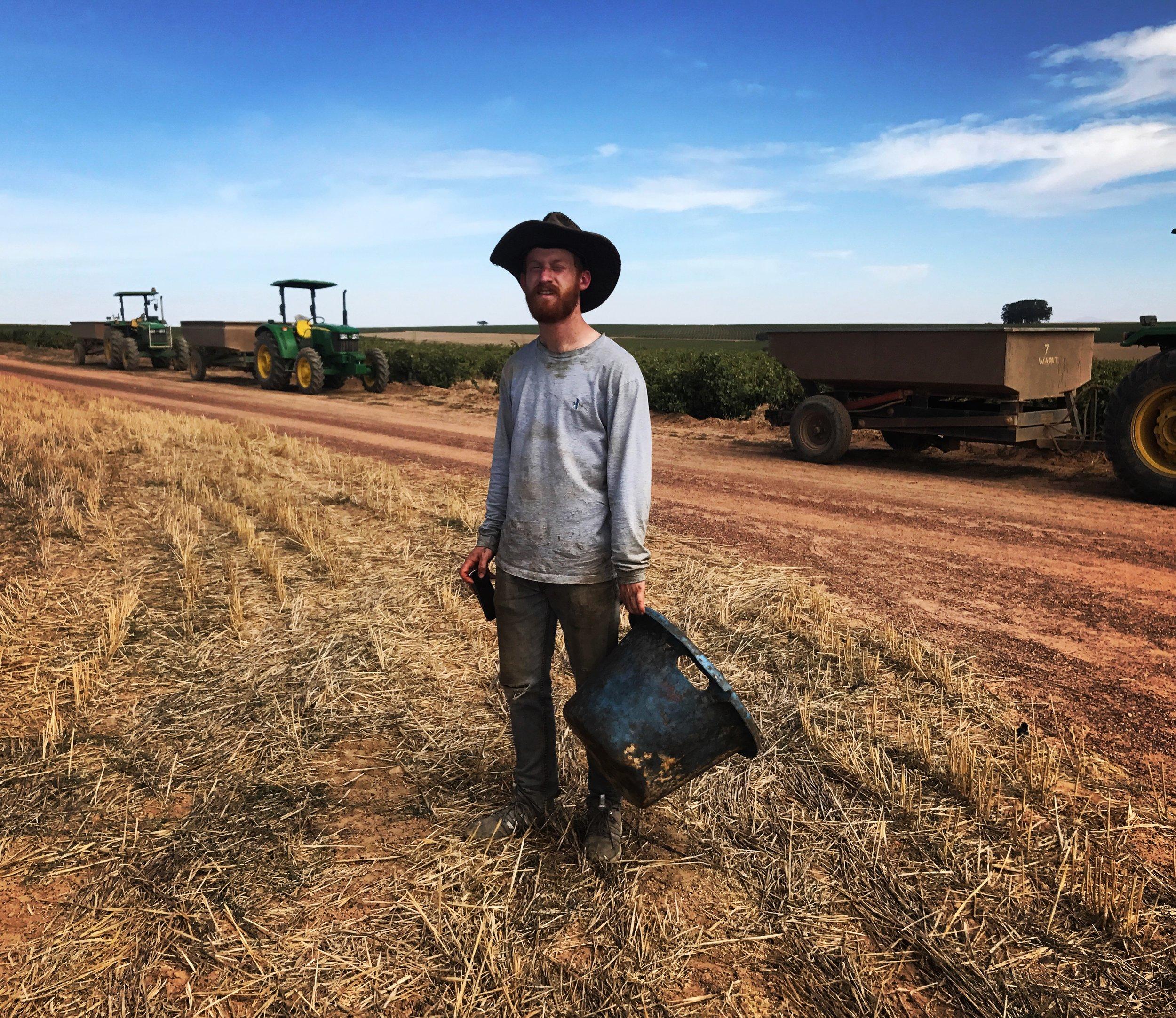 Charlie Brain working on wine farm.JPG