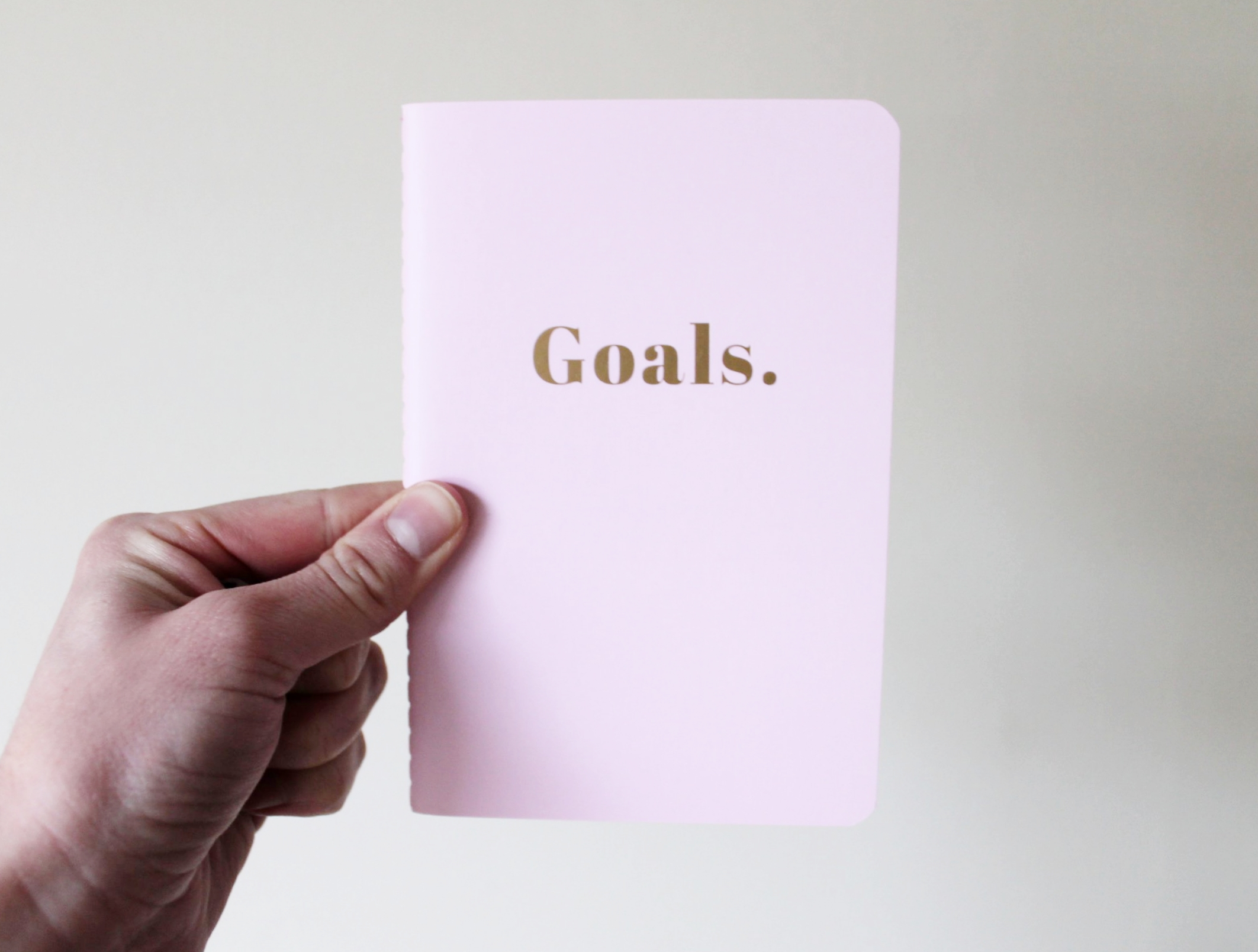 I love this goal notebook my friend gave me- writing my goals down on paper makes them seem more offical!