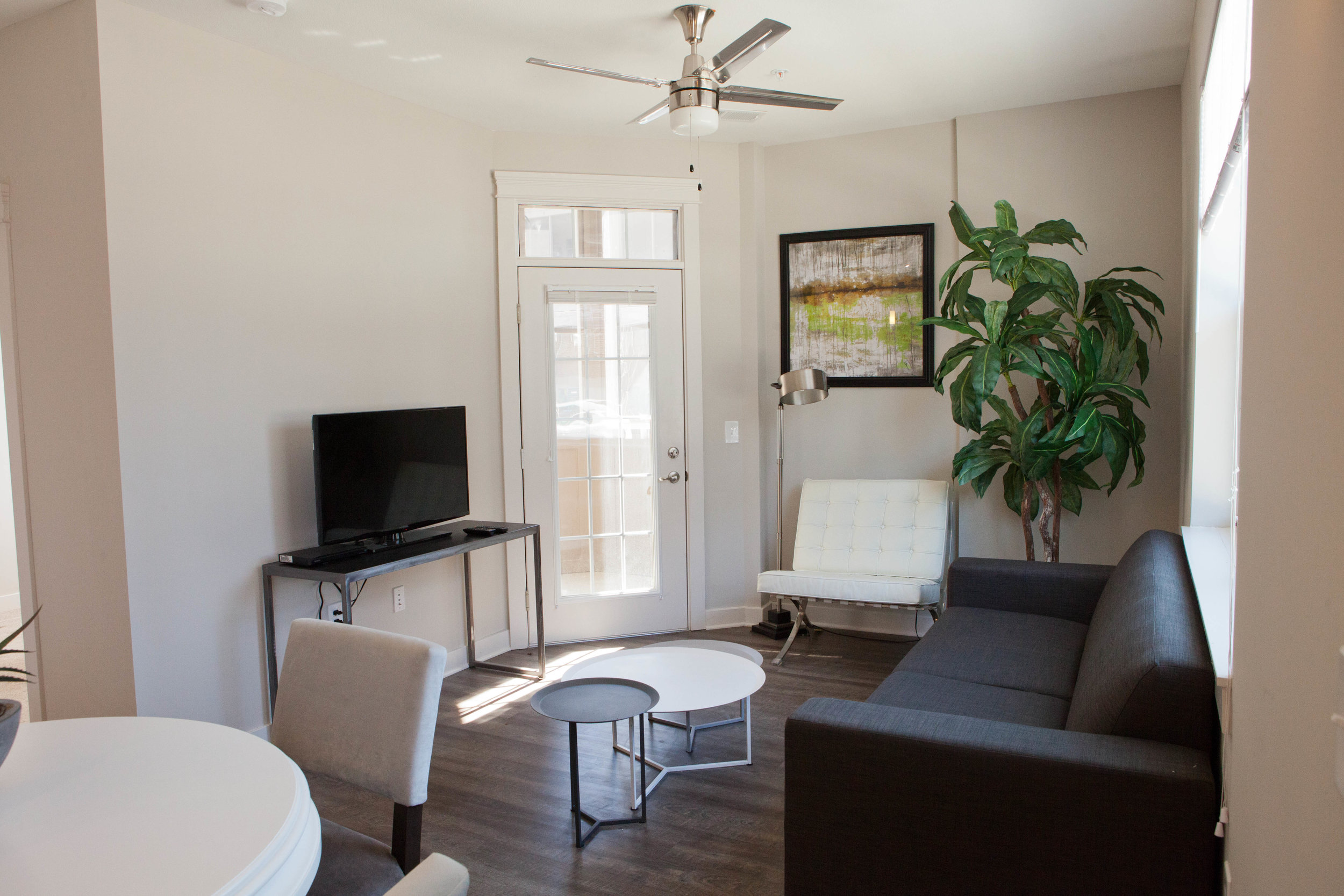 City Flats on Walnut - model living room (apartment).JPG