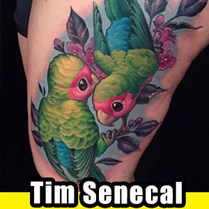 Tim Senecal.jpg