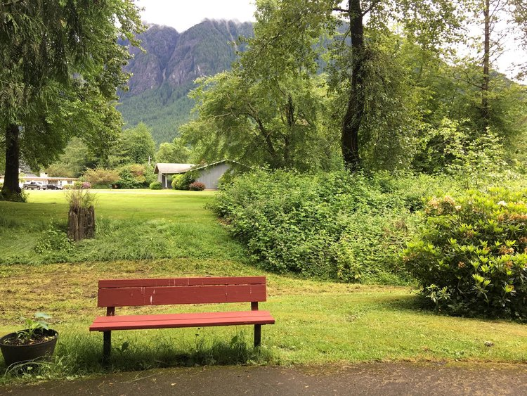 CARL'S BENCH:     This is the bench seen in the 6th part of the new Twin Peaks were Carl Rodd is sitting smoking a cigarette and drinking coffee just before the car accident.