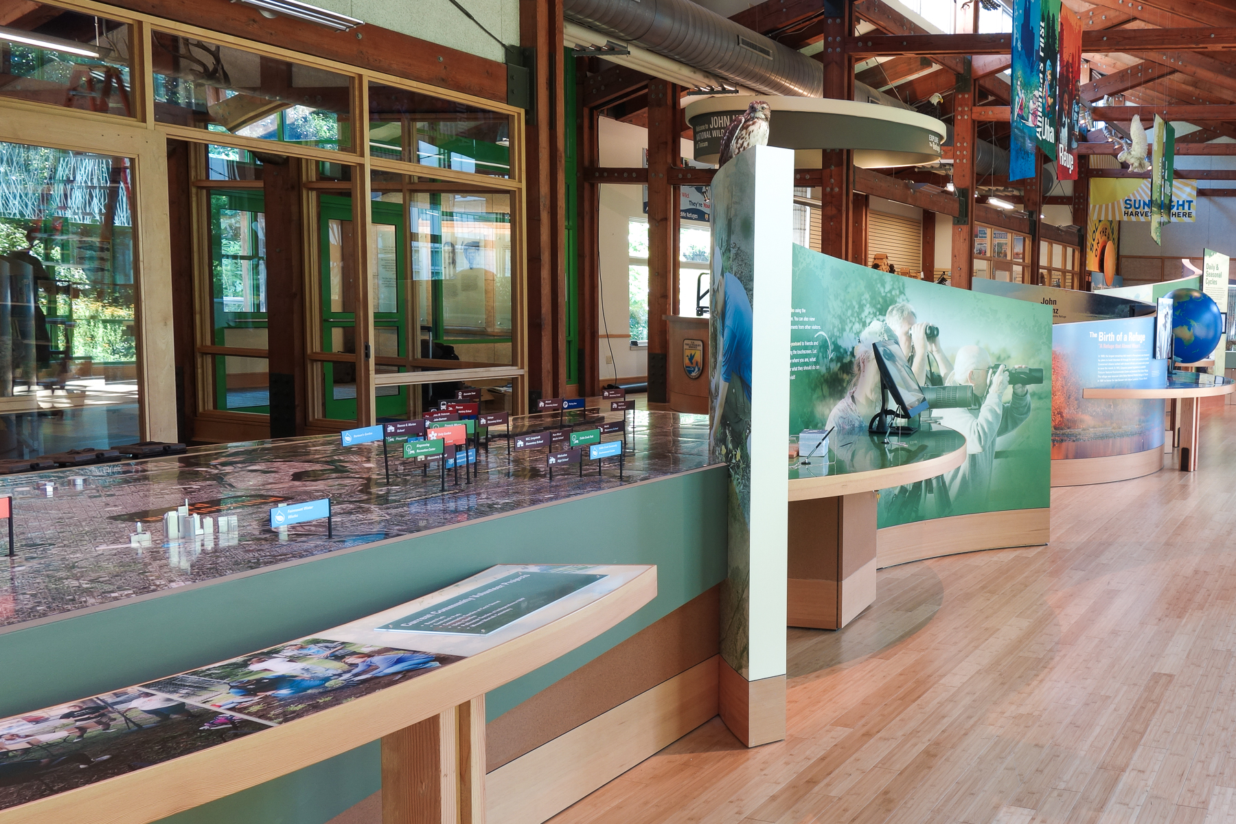 Curved walls form freestanding, double-sided graphic murals and guide visitors through the exhibits.