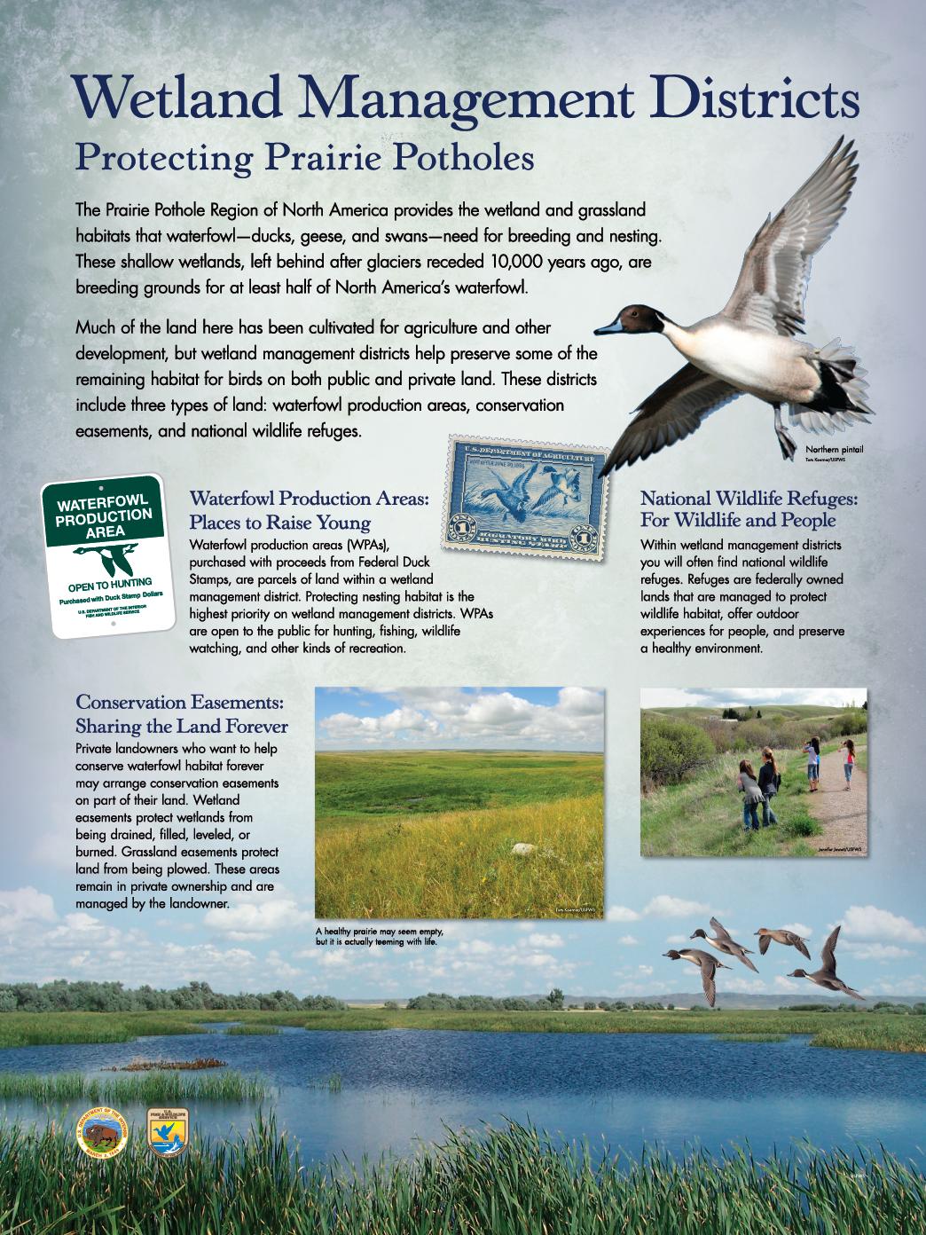 "WMD – Protecting Prairie Potholes ( 36"" x 48"" )"