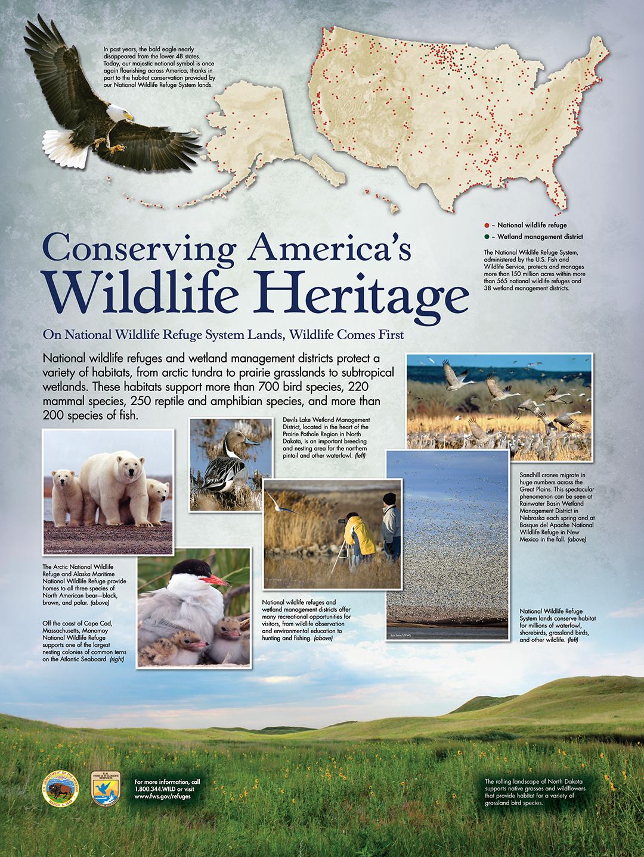 """Conserving America's Wildlife Heritage ( 36"""" x 48"""" )"""