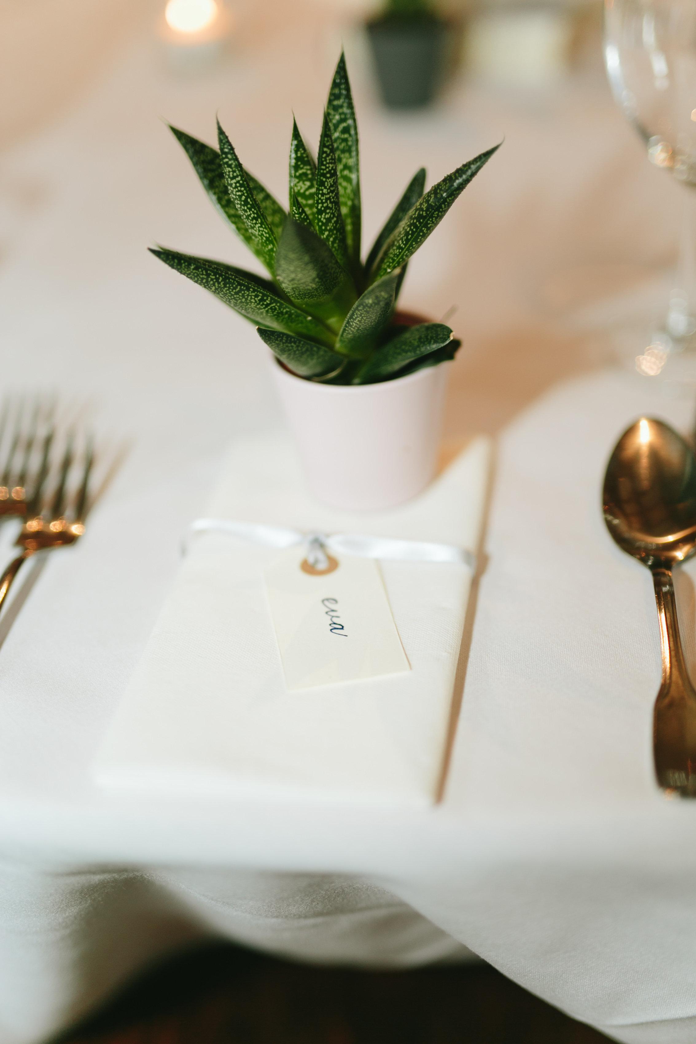 Wedding Decor - Place Cards