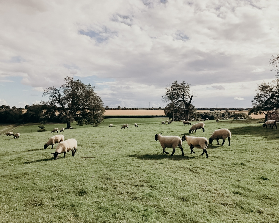 guide-to-the-cotswolds-hampnett