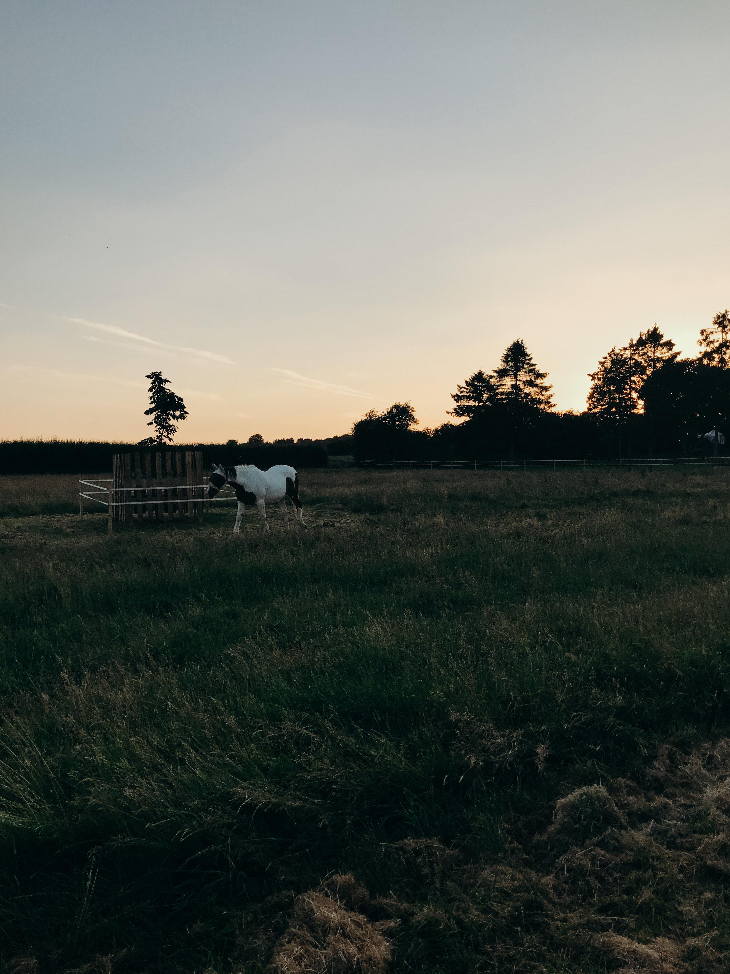Summer 2018 Highlights - Cotswolds Sunset