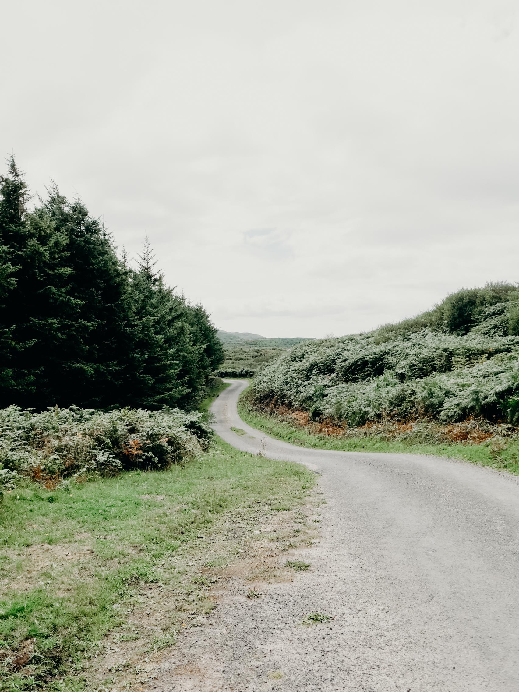 The Isle of Gigha, Scotland