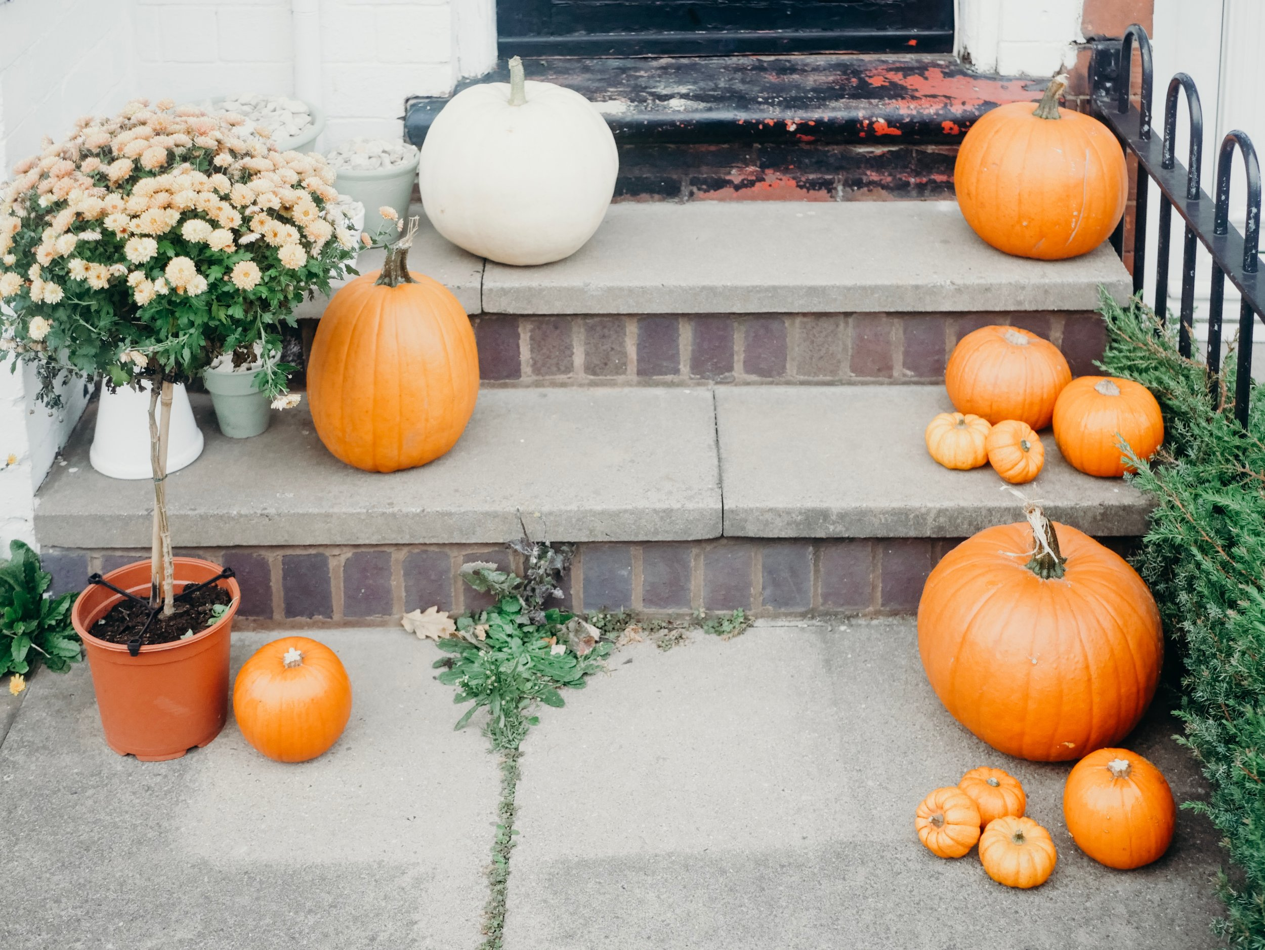 Front Porch Fall Decor