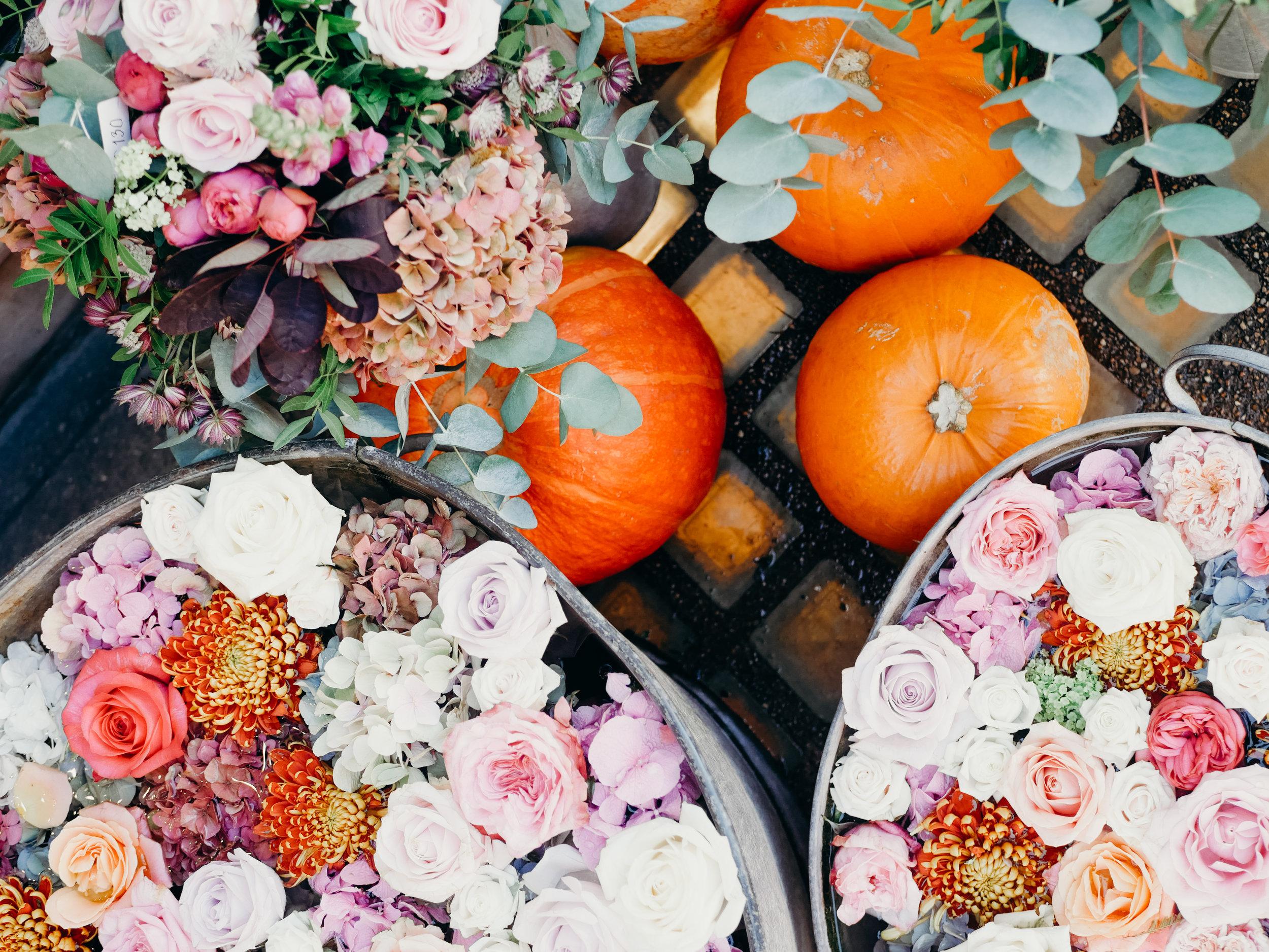 Wild Things Flowers