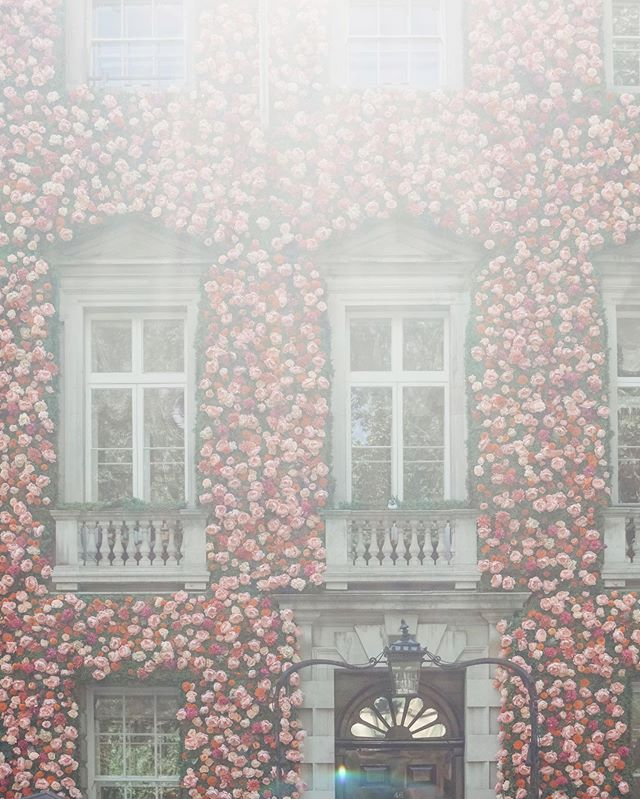 Did you even go to London in the springtime if you don't post a photo of Annabel's? (By the way, it's a private club in Mayfair.) My mom said she's going to put a big floral installation on her house next spring when she's retired. 🌺🌼🌸 #joy42 #joy42travels #london #visitlondon #londoninbloom #annabelsmayfair