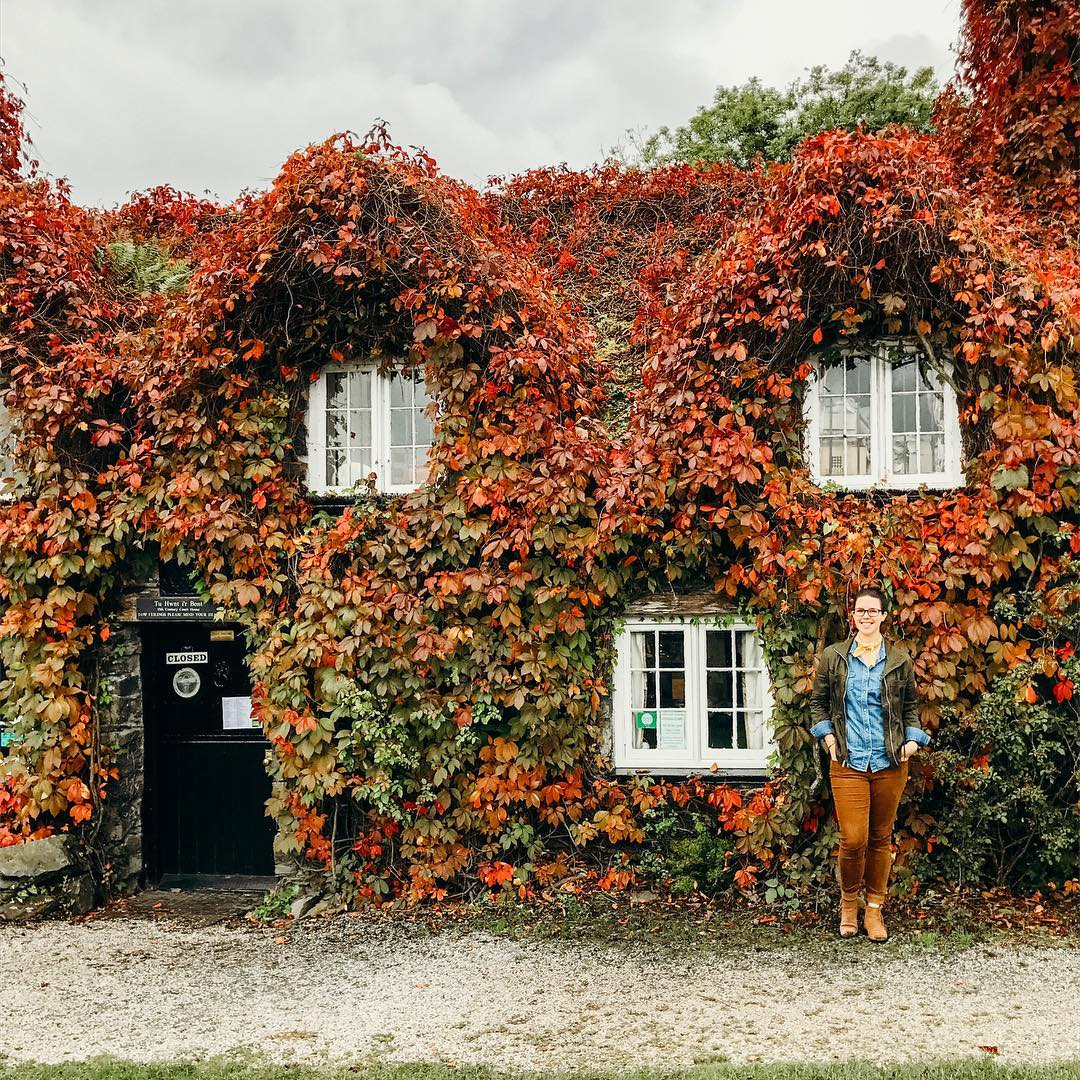 2019 Autumn Bucket List - See the Foliage