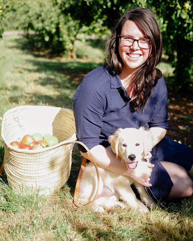 Apple picking yesterday with the cutest pup in the world! 🍎 . . . . . #EggsBenedictAdventures #BenedictsGoldenAdventure #dogsofinstagram #puppiesofinstagram #goldenretriever #goldenretrieverpuppy #doglife #adventurepup #fallvibes #applepicking #appleorchard