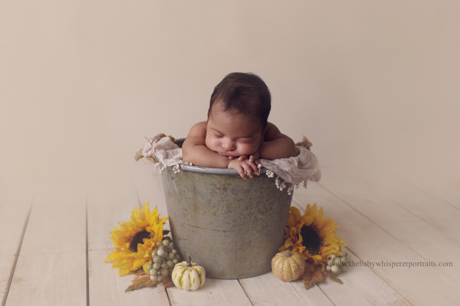 phoenix newborn photographer  (1 of 58).jpg