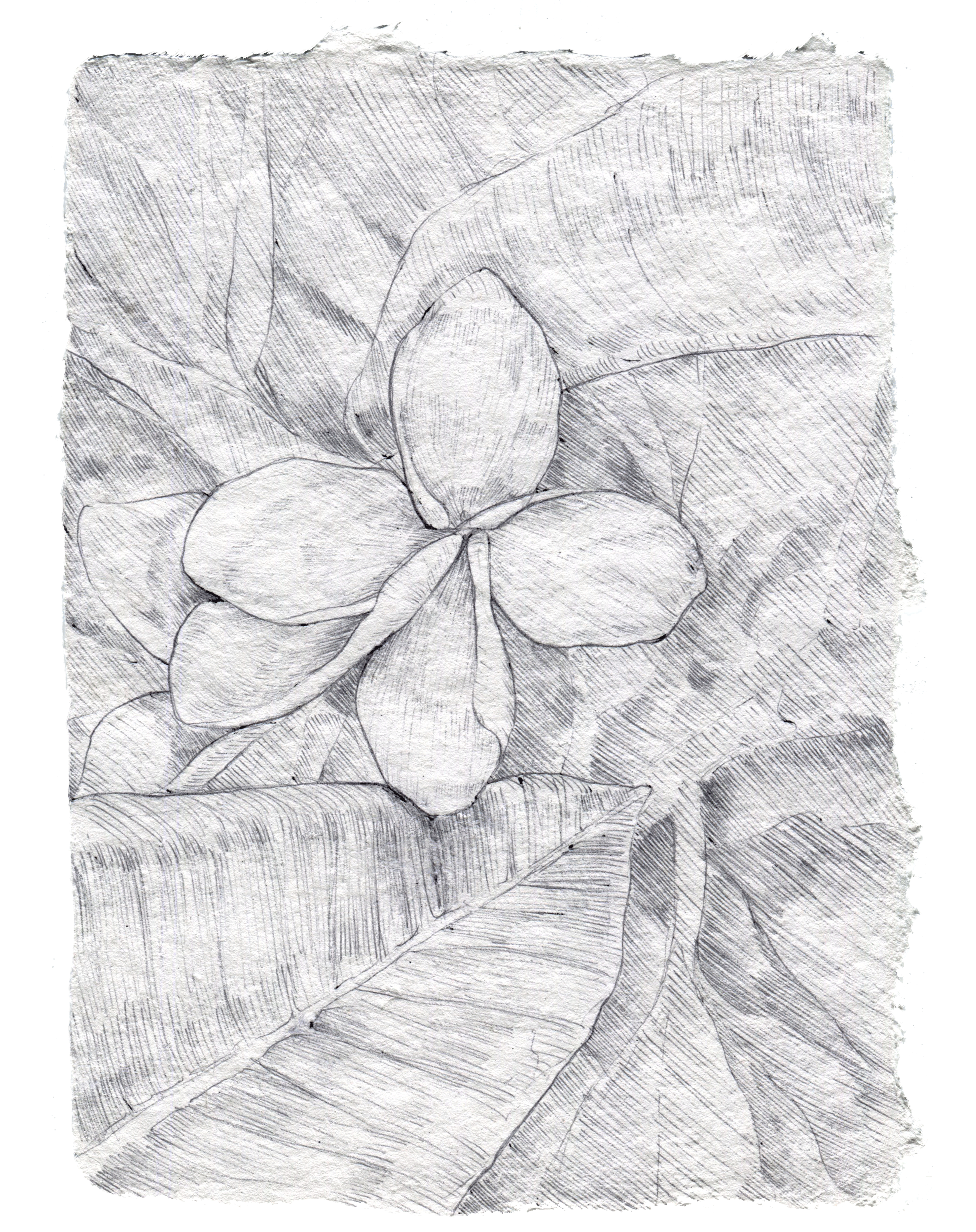Arquetopia_AIR3.png