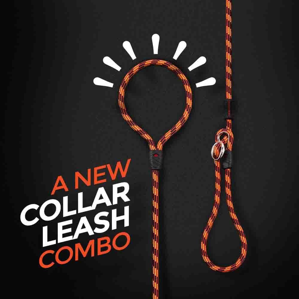 luca-dog-leash-lifestyle2__45829.1493670584.jpg