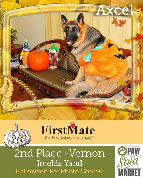 Halloween Contest Winners-Vernon 2.jpg
