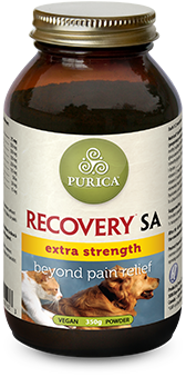 Recovery-SA-Extra.png
