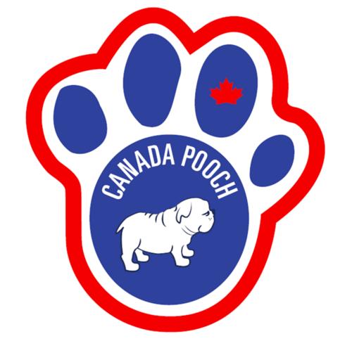 canada-pooch.png